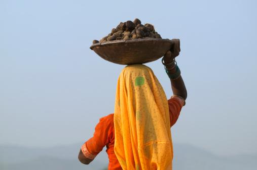 Narmada bachao andolan essay outline